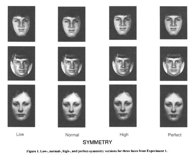 Symmetry%20Rhodes%20experiment.JPG?psid=1